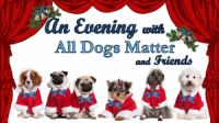 An Evening with All Dogs Matter