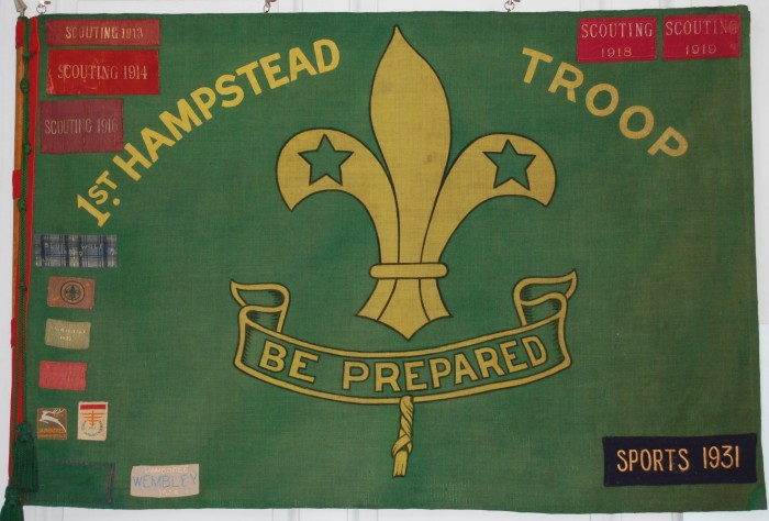 Scouts Flag