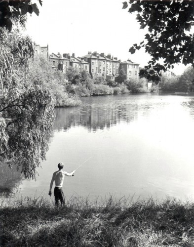 Hampstead Heath pond / Gay (1994.42.14)